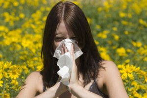 Charleston Allergies and Asthma